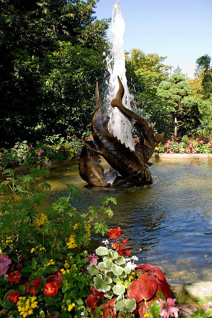 Sturgeon Fountain in Butchart Gardens, British Columbia, Canada