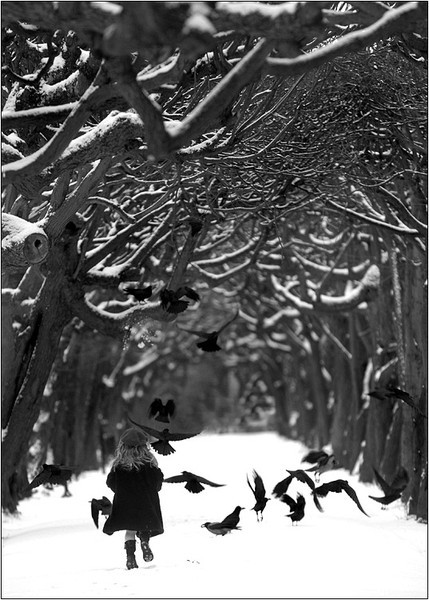 Ravens Wood, Warsaw, Poland