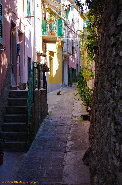 Narrow street in Porto Venere, Liguria, Italy