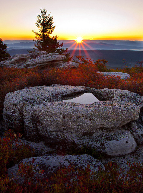 Sunrise at Bear Rocks Preserve in West Virginia, USA