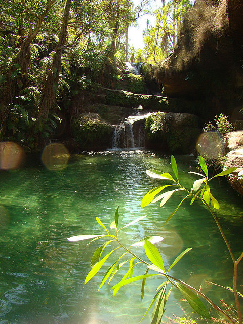 The emerald natural pool in Isalo Natural Park, Madagascar