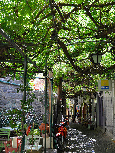 Wisteria covered streets of Molyvos, Greece